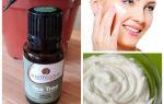 Масло чайного дерева для лица – свойства и применение для кожи, рецепты от прыщей и противопоказания