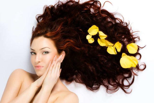 Маска для волос с маслом и медом – полезные свойства и действие, рецепты и способы применения