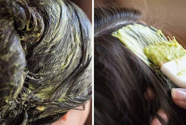 Маска для волос из авокадо – полезные свойства и лучшие рецепты, способы применения и результаты