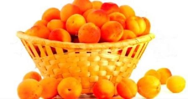 Масло абрикоса и его косточек для лица – свойства и применение в косметологии, маски от морщин