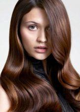 Краска для волос шоколад – в какой фирме найти этот оттенок и кому он подходит