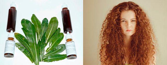 Масло усьмы для волос – способы применения и полезные свойства, рецепты масок и их воздействие