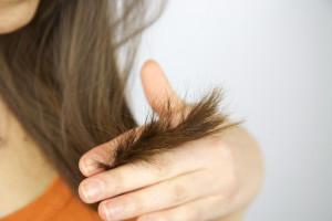 Маска для секущихся волос – как сделать средство для кончиков в домашних условиях