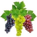 Пилинг tiande для лица виноградный и оливковый – описание и свойства, плюсы и минусы, инструкция