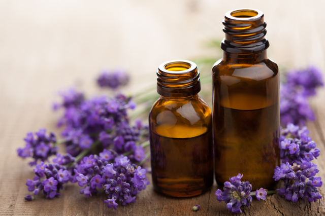 Масло чайного дерева для волос – способы применения средства, рецепты масок от выпадения