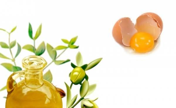 Маска для волос с маслом и яйцом – лучшие рецепты и польза, правила выбора и рейтинг масел