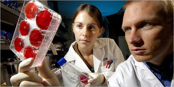 Омоложение организма на клеточном уровне – особенности применения стволовых клеток