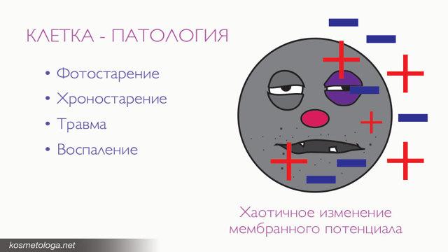 Аппарат для rf-лифтинга gezatone – виды: m1603 и m1605, как действуют микротоки, отзывы косметологов