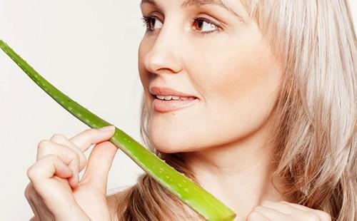 Алоэ для лица – лечебные свойства и показания, рецепты масок в домашних условиях и противопоказания